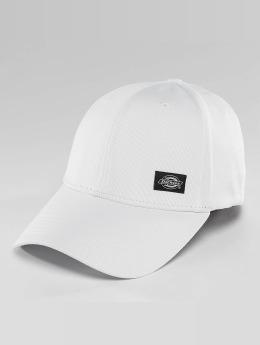 Dickies Flexfitted Cap Morrilton weiß