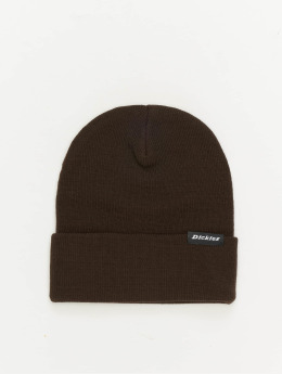 Dickies Hat-1 Alaska brown