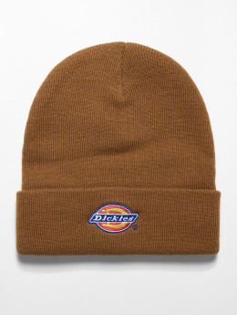 Dickies Hat-1 Colfax brown