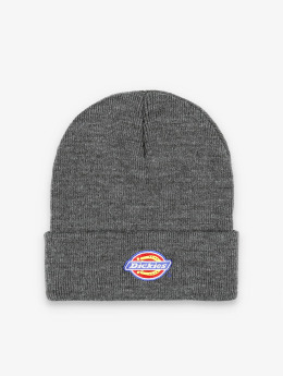 Dickies Hat-1 Colfax gray
