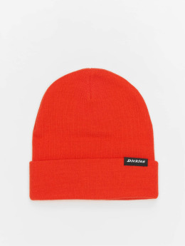 Dickies Hat-1 Alaska orange