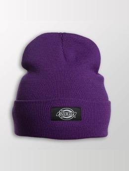 Dickies Hat-1 Yonkers purple