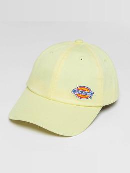 Dickies snapback cap Willow City geel