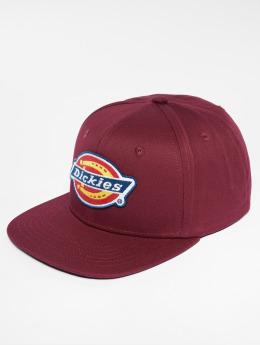 Dickies snapback cap Muldoon rood