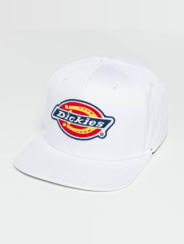 Dickies Snapback Cap Muldoon white