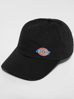 Dickies Snapback Caps  Willow City čern