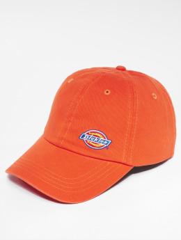 Dickies Snapback Caps Willow City 5 Panel oranžový