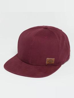 Dickies Snapback Caps Minnesota punainen