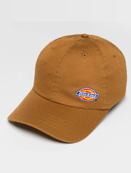 Dickies Snapback Caps Willow City ruskea