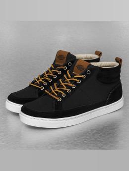 Dickies Männer Sneaker Connecticut in schwarz
