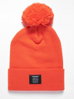 Dickies Talvipäähineet Edgeworth oranssi