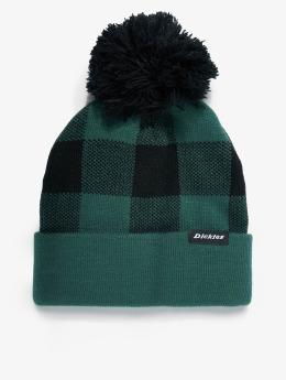 Dickies Winter Hat Shawsville green
