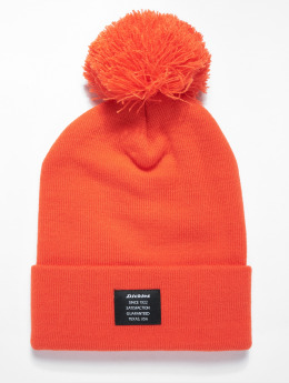 Dickies Winter Hat Edgeworth orange