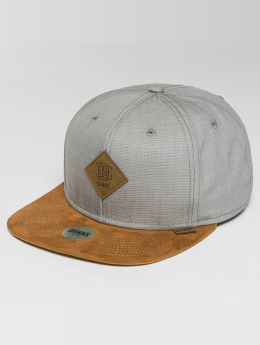 Djinns Snapback Caps Linen 2014 šedá