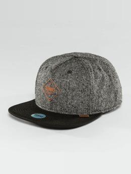 Djinns Snapback Caps Spotted Gum šedá