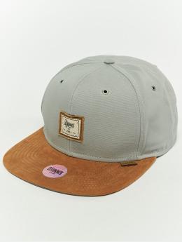 Djinns Snapback Caps 6p 10oz harmaa