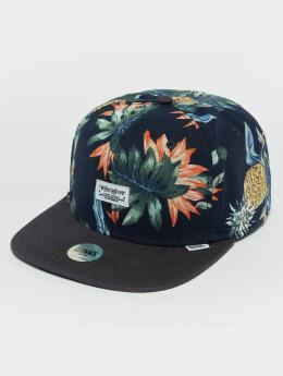 Djinns Snapback Caps CP Pineapple kirjava