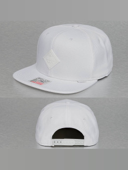 Djinns Snapback Caps Monochrome 6 Panel valkoinen