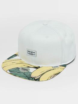 Djinns Snapback Caps CP Banana valkoinen
