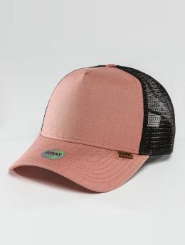 Djinns trucker cap Djinnselux rose