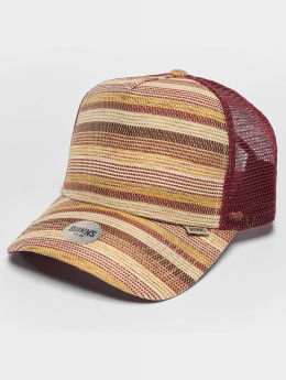 Djinns Thaibast High Fitted Trucker Cap Wine