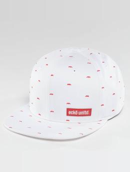 Ecko Unltd. Snapback Caps Capstar valkoinen