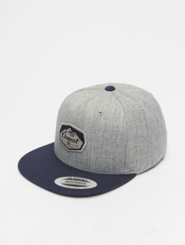 Element Snapback Caps Trekker šedá