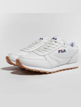 FILA Sneaker Sport Orbit Jogger weiß