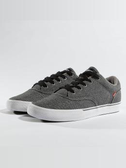 Globe Sneaker Tribe grau