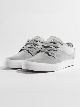 Globe Sneaker Mahalo grigio