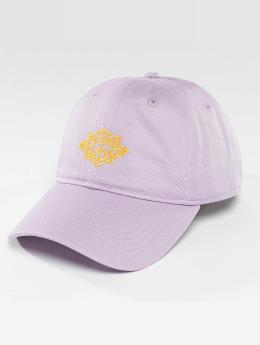 Homeboy Snapback Caps Nappo Logo fioletowy