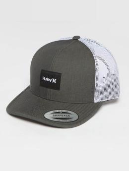 Hurley trucker cap Surf Company grijs