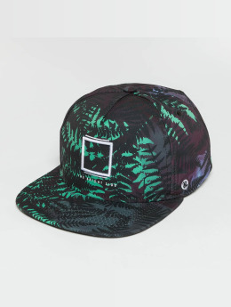 Just Rhyse Snapback Cap  colored