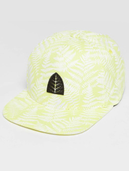 Just Rhyse Snapback Cap Zorritos Yellow