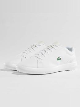 Lacoste Baskets Avantor blanc