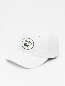 Lacoste Snapback Caps Patchy hvit