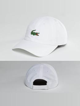 Lacoste Snapback Caps Logo valkoinen