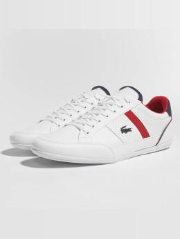 Lacoste Sneaker Chaymon I weiß