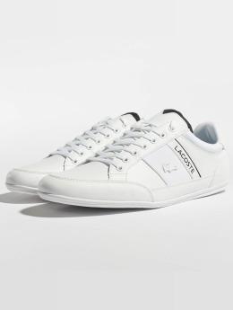 Lacoste Sneakers Chaymon 318 4 Us Cam hvid