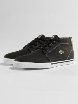 Lacoste Sneakers Ampthill sort