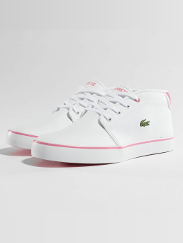Lacoste Sneakers Ampthill white