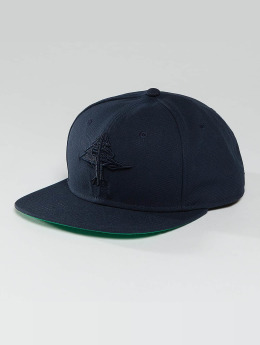 LRG Snapback Cap Research Collection blau