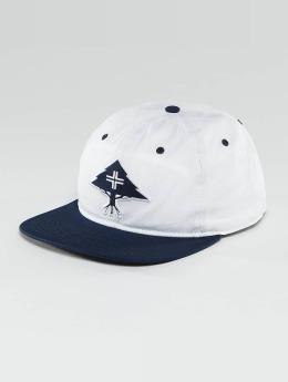 LRG Snapback Cap Treesearch blau