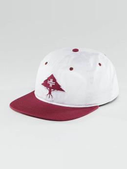 LRG snapback cap Treesearch rood