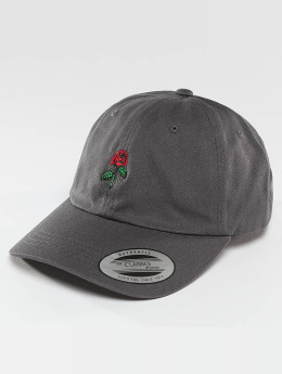 Mister Tee Snapback Cap Rose Dad grey
