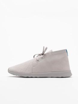 Native Sneaker Chukka grau