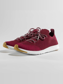Native Sneaker AP Mercury LiteKnit rot