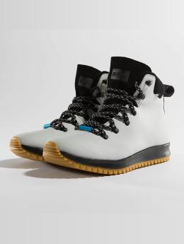 Native Vapaa-ajan kengät AP Apex CT harmaa