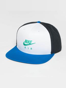 Nike Verkkolippikset Air NSW Pro Cap harmaa