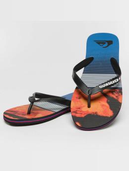 Quiksilver Badesko/sandaler Molokai Lava Division svart